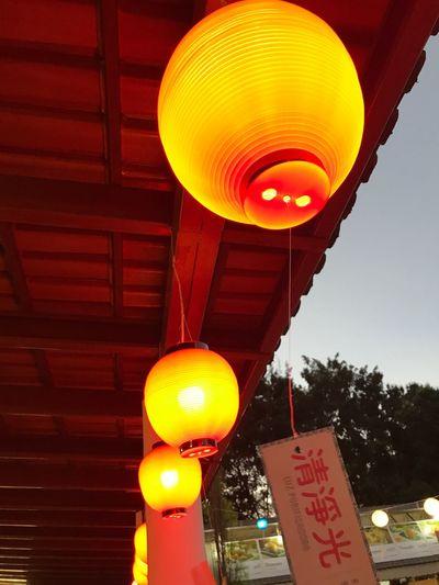 Lanterns 2 Buddhist Temple Buddhism Festival Illuminated Lantern Low Angle View Celebration Chinese Lantern Festival Visual Creativity