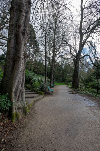 Park side walk