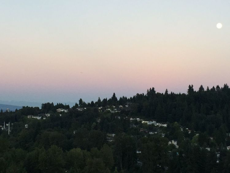 Pink skies and big (but small in the pic) moon Sky Collection Moon Sunset_collection Twilight
