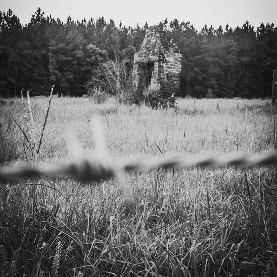 The Lonely Chimney Fireplace Middleburg Barb Country Claycounty Stillstanding Blackandwhite (part 2)