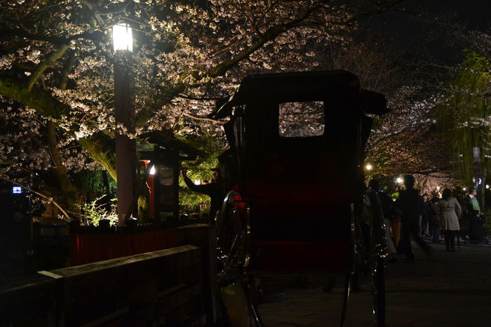 Gion, Kyoto Nice Atmosphere 🌃✨ Night Shots  Nightphotography Outdoor Photography Sakura Blossom Street Lights Streetphotography The Street Photographer - 2017 EyeEm Awards The Great Outdoors - 2017 EyeEm Awards EyeEmNewHere