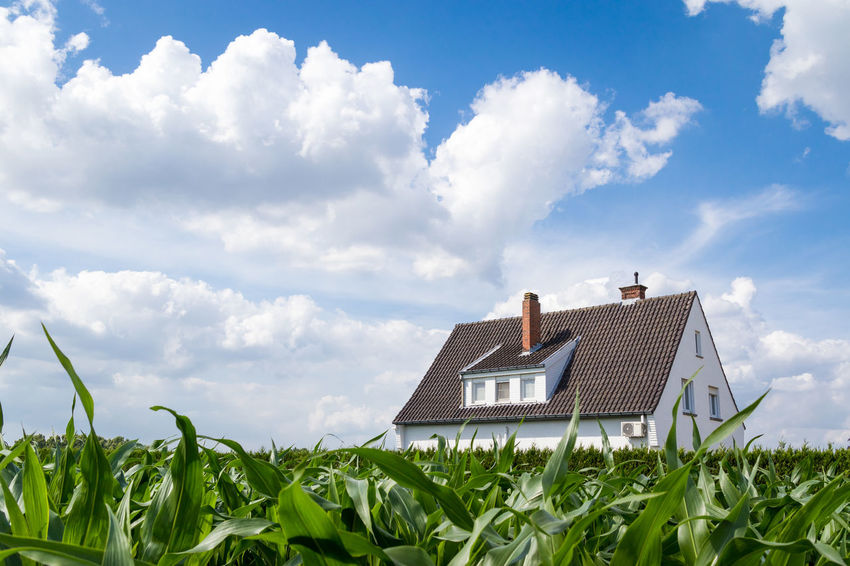 Dramatic Sky Agriculture Architecture Beauty In Nature Building Building Exterior Built Structure Cloud - Sky Corn Corn Field Day Environment Field Fluffy Clouds Green Color Growth House Land Landscape Nature No People Outdoors Plant Rural Scene Sky
