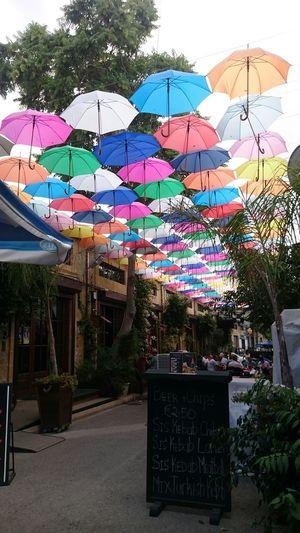 Umbrella restaurant. 彩虹傘高高掛。 Umbrella Restaurant Cafe Rainbow Cyprus Nicosia 雨傘 彩虹