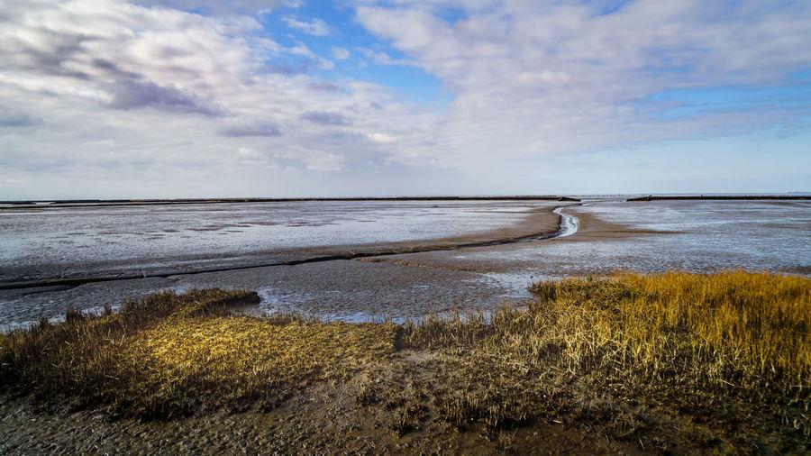 Salt Marsh Beach Beauty In Nature Cloud - Sky Day Grass Horizon Horizon Over Water Idyllic Land Marram Grass Nature No People Non-urban Scene Outdoors Plant Scenics - Nature Sea Sky Tranquil Scene Tranquility Water