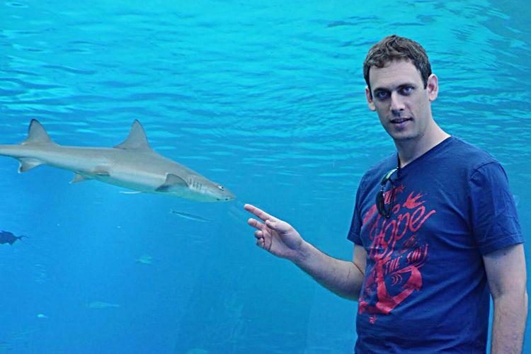 People Of The Oceans Blue Blue Wave Ocean Sea Water Planetarium Aquarium Pool Shark Fish Swimming Swimming Pool Israel Eilat Young Adult Young Men Animals Wildlife Wildlife & Nature Wild Animal