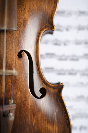Violin Wood -