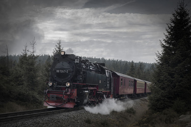 Stream train,  harz mountains