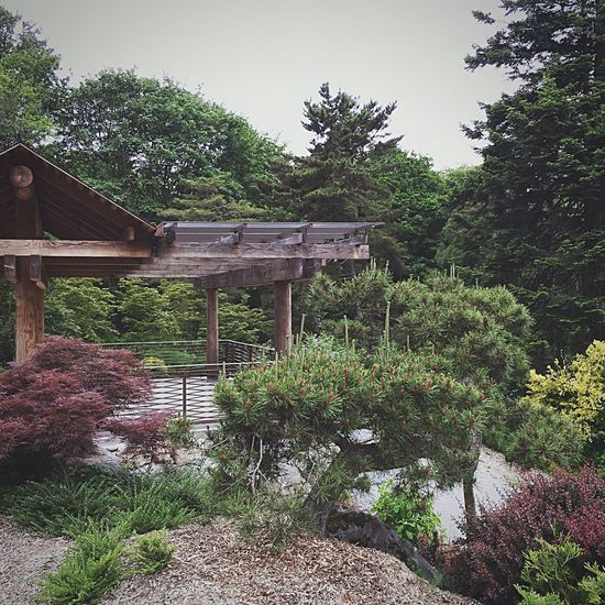 Kevinnakphoto Kubotagarden Seattlephotographer Japanese Garden Garden Photography Flowers,Plants & Garden