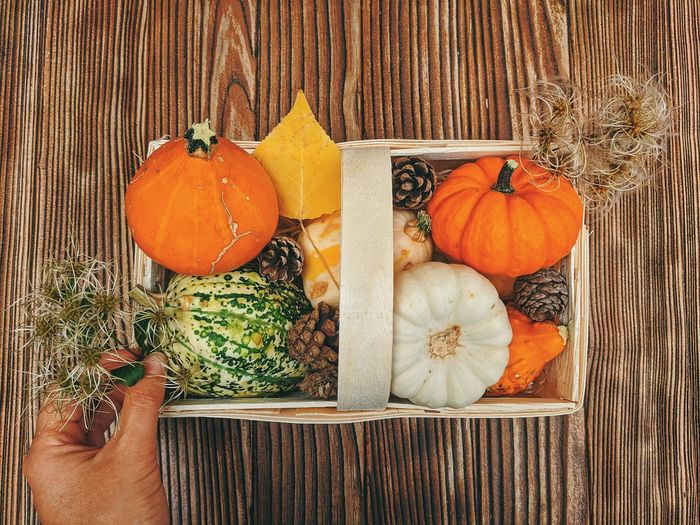 Midsection of person holding pumpkin on wood