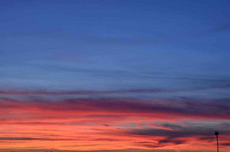 Nofilter Sunset Natural Beauty EyeEmBestPics EyeEm Best Shots Showcase: December Theskyaboveus Neon