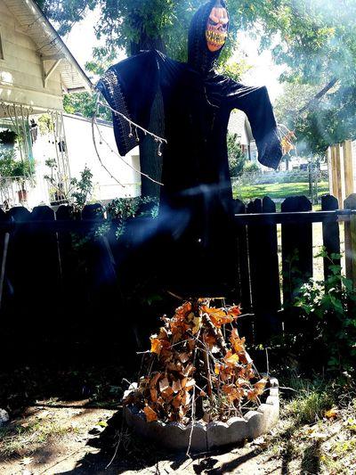 My haunted yard Happy Halloween Halloweenideas