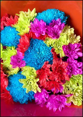 Beautiful bunch of Flower's 💐💐💐 Bouquet Bouquet Of Flowers Flowers Flower Collection Flowers Of EyeEm Rainbowflowers Flowerphotography Flowers Of The Day Flowermagic Scent Of A Flower Beautifulflowers 💐💐💐