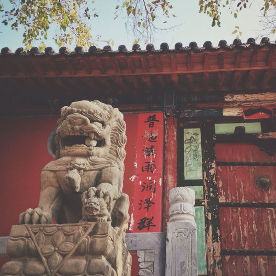 Seeking the ancient temple (殊海寺) in deep mountain. 8. Ying County Shanxi Province Stone Lion Temple Wooden Gate Old Trees Sky