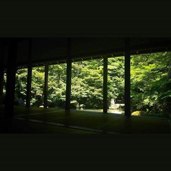 7/26 蓮華寺 日差しが強い。 月一蓮華寺 Team_jp_ Japan Instagood 景色 Scenery 自然 Nature Icu_japan Ig_japan Ig_nihon Jp_gallery Japan_focus 蓮華寺 寺 京都 Temple Kyoto
