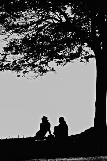 A Quiet Moment By The Sea Gloucester MA Nature Peace Quiet Moments Under A Tree Adult Adults Only Ahhh Bonding Day Love Outdoors Peaceful People Quiet Time Silhouette Sky Together Togetherness Tree Two People