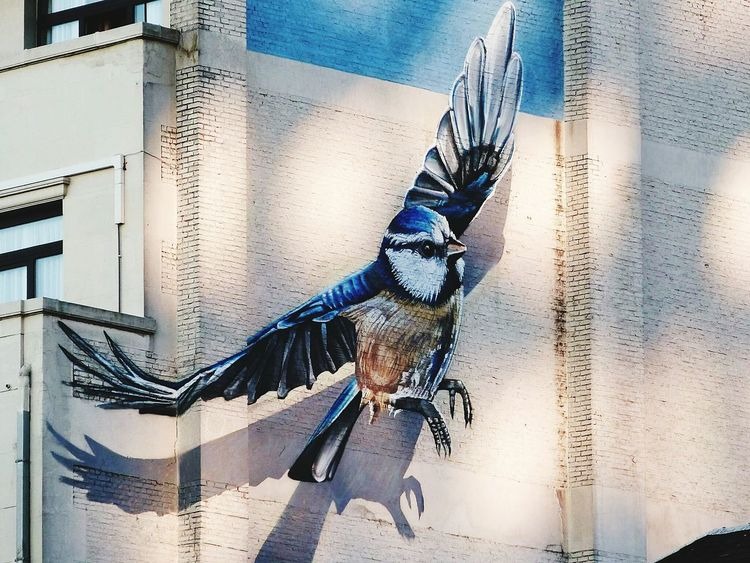 Artist Art Urban Bird Building Exterior City Life Outdoors Architecture