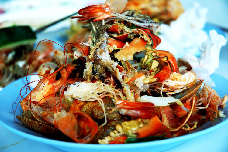 waste food after eating seafood. Waste Food Animal Themes Close-up Day Focus On Foreground Food Food And Drink Freshness Healthy Eating Indoors  Lobster No People Plate Prawn Ready-to-eat Seafood Serving Size Shell Waste Food Stories