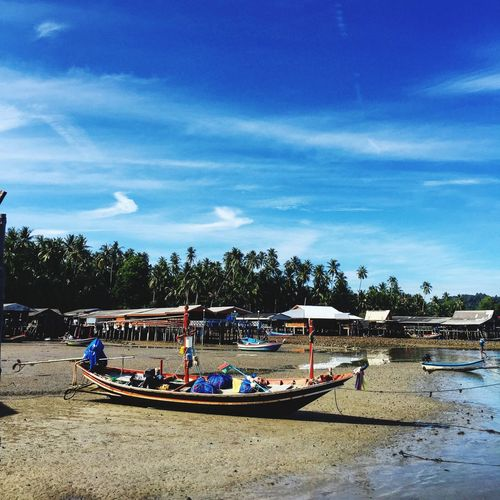 The seashore when low tide Marine Vehicle Seaside Thailand Boats Seashore Coast Low Tide Low Tide Revelations Low Tide, Dry River Bed Sjy Blue Tourism Village Lifestyle Culture Beach Water Sky Sand Day Tree Cloud - Sky Nature Nautical Vessel Outdoors Beauty In Nature EyeEmNewHere An Eye For Travel