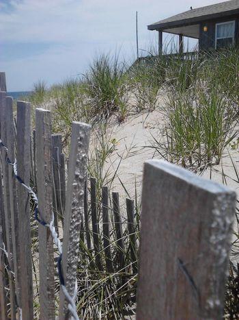 Coastal Carolina Salt Life Sand Dunes OBX North Carolina