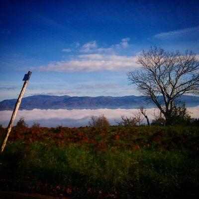 Valle Tiberina nella nebbia