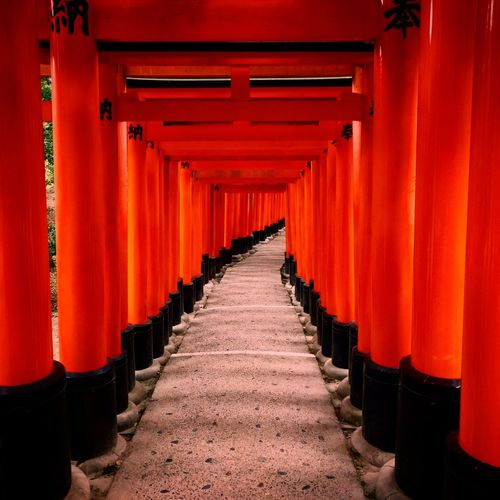 The 32,000 arches of the Fushimi Inari shrine in Kyoto make a bizarre glowing orangey-red tunnel... Built Structure Diminishing Perspective Fushimi Inari Shrine Japan Japanese Culture Japanese Temple Orange Perspective Red Shrine Temple Tunnel Ultimate Japan