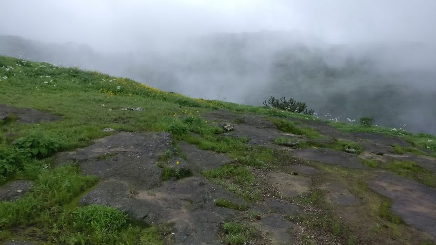 Beauty In Nature Cloud - Sky Day Fog Grass Landscape Mountain Nature No People Outdoors Scenics Sky Tranquility