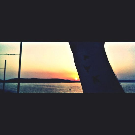 Fly Away Memories Malta2014