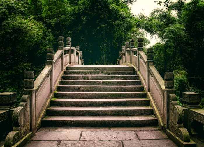 Low angle view of steps amidst trees