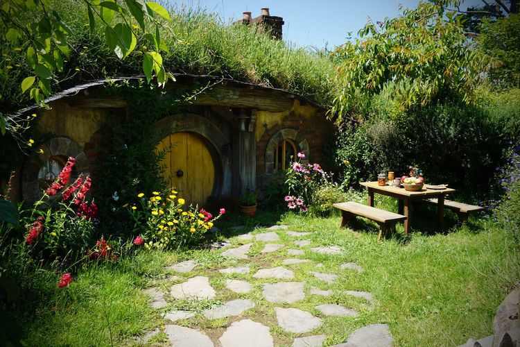 2017 Grass Green Hobbit Architecture Beauty In Nature Day Flower Garden Grass Growth House Nature New Zealand Outdoors Plant Tree ニュージーランド ホビット ホビット村 小人
