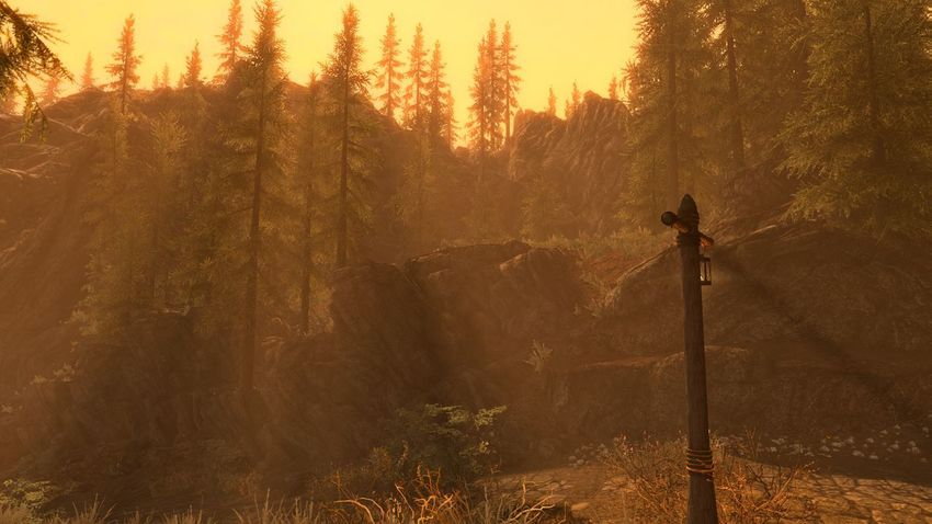 A stunning sunset.. Tree Nature Sunset Forest Back Lit Sunlight Fog Silhouette Beauty In Nature No People Landscape Scenics Outdoors Autumn Tranquil Scene No Edit, No Filter, Just Photography Gaming XboxOne Skyrim EyeEmNewHere