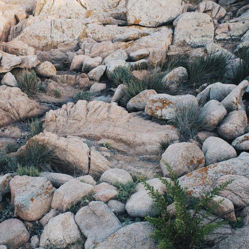 Rocks in sunlight