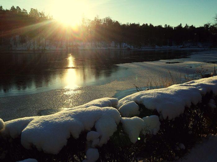 Winter Wonderland Stockholm Winter Nature Landscape Monochrome Sunlight Sunset Ocean