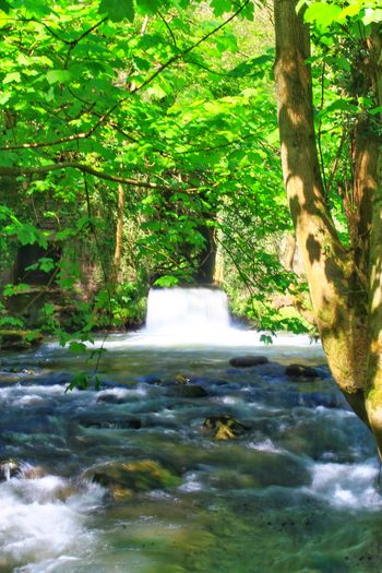 Managed to get a high res using the DLSR, the one before I took on my phone. Waterfall Motion Blur Water Blur Long Exposure Landscape Nature Spring Mother Nature Life