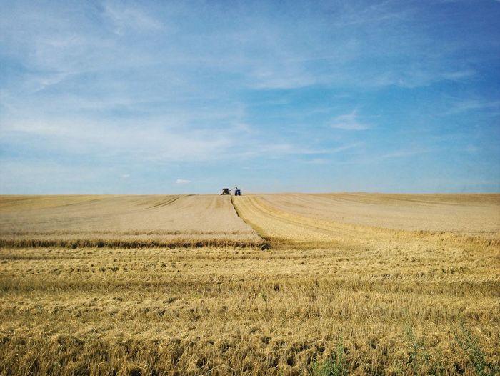 Harvest Landscape France Nature Field