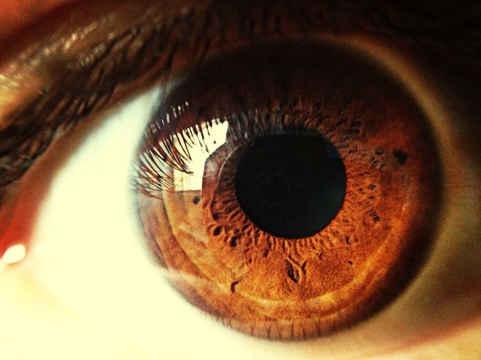 Mine eye! Cool Shapes Body Parts Eye Picoftheday