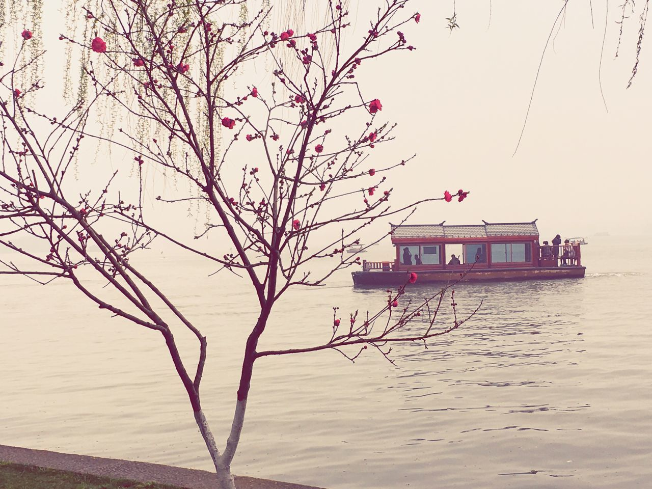 water, nature, tree, branch, beauty in nature, waterfront, nautical vessel, scenics, outdoors, houseboat, transportation, tranquility, bare tree, no people, lake, day, clear sky, sky