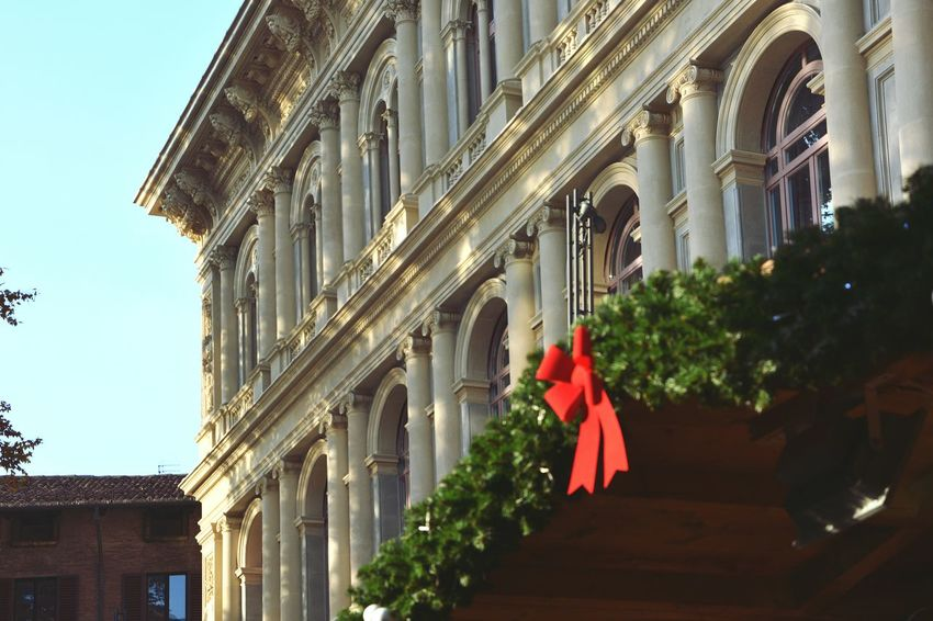 Red Tree City Architecture Sky Built Structure Outdoors Building Exterior No People Christmas Day Palazzo Toschi Bologna Italy Mercatino Francese Nikon D5200