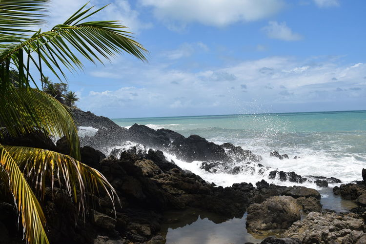 Trinidad And Tobago Beauty In Nature Nature Outdoors Rock - Object Scenics - Nature Sea Tropical Climate Water