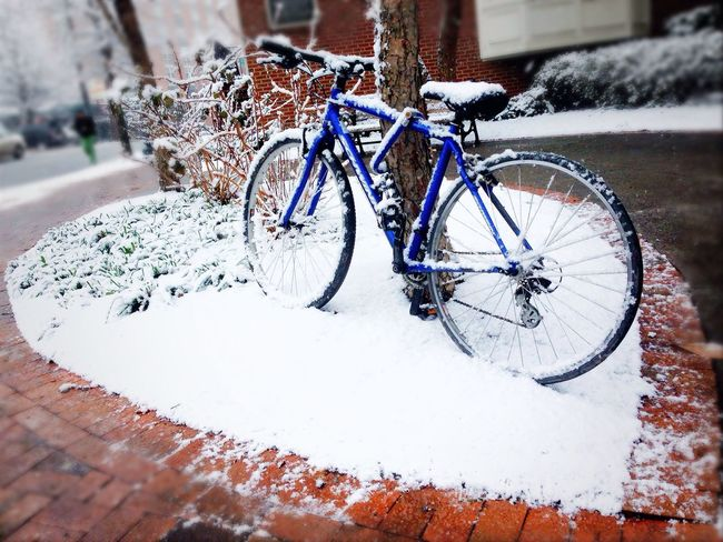 Snow ❄ Snowday Winter Bike DC Silverspring Streetphotography Street Photography Walk This Way