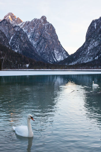 Braies Braies Lake Dolomites, Italy Braies Lake Dolomites Lake Mountains Mountains And Lake Lake And Mountain Italy Dolomites South Tyrol Südtirol Winter Lake View Dolomiti Landscape Alps Tourism Vacations Vacation