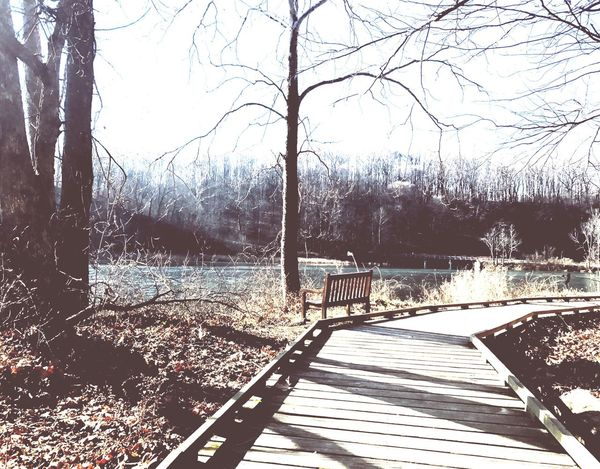 Empty bench in sunrise at a frozen lake Lake Frozen Sunrise Bench Morning
