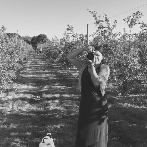 Apples LongIslandNY