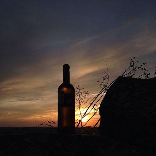 Posta de Sol a l'Ametlladesegarra amb @labudo i @mar_mare_mer a Lasegarra Wine Vi Copa Culturadevi Amics Friends Weekend Capdesetmana Instawine Instamoments Sunset Postadesol DOConcadeBarbera Süsel