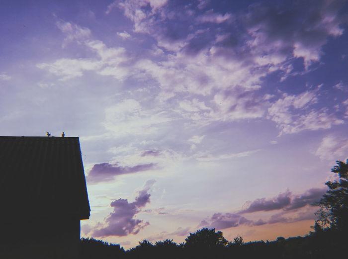 Tree Sunset Sky Cloud - Sky Dramatic Sky Romantic Sky Storm Cloud Atmospheric Mood Cumulonimbus Overcast Tornado Salt Basin Cyclone Moody Sky Forked Lightning Sky Only Thunderstorm Meteorology Forest Fire Lightning Ominous Storm Atmosphere Smoke Stack Silhouette