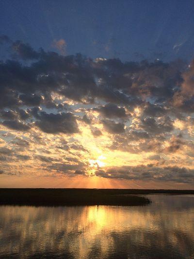 My morning view Bayou Sauvage Sunrise