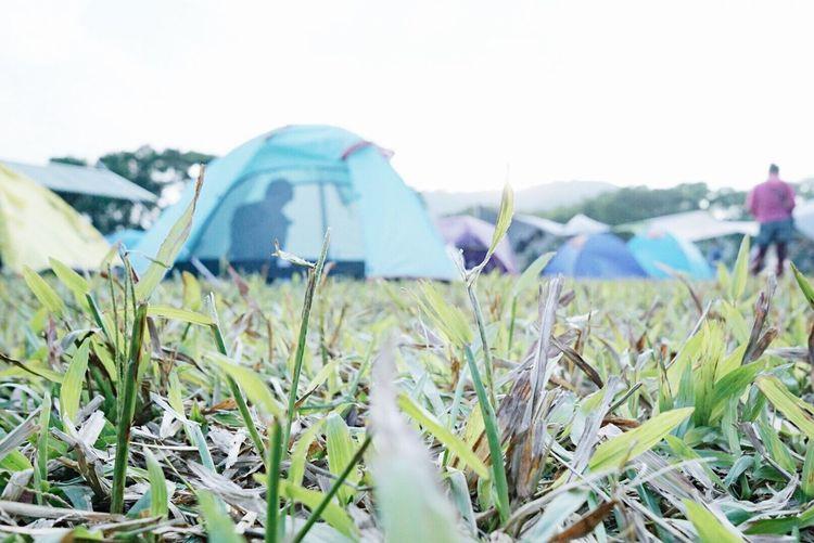 Camping on New Year's Eve Camping Hongkongcamping Newyearseve Campinghongkong