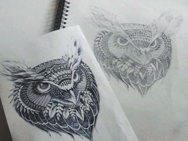 Owl Art Creativity Animal Representation Illustration