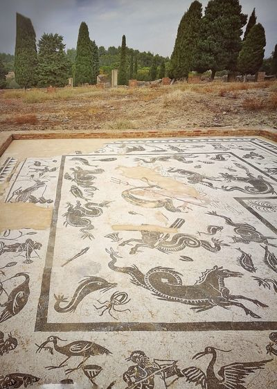 """Italica floor mosaics """"House of Neptun"""" dating from the second century No People Outdoors Ancient Civilization Old Ruin Travel Destinations From My Point Of View EyeEm Eye4photography  Capture The Moment Tadaa Community Roman Ruins Italica Architecture History Mosaic Tiles Archeological Site Andalusia SPAIN"""