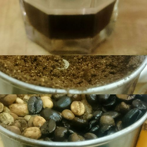 Hello World ..Bad ( #way ) to #try Mix two types of Coffee Beans . . It was : Right brazilianbeans Left harare coffeebeans I don't suggest for this! NOT GOOD IN ALL! Have a nice day people 🙋 c Coffee Coffee At Home Espresso Home Made Grinder Eyeem Coffee Eyeem Coffee Lover .