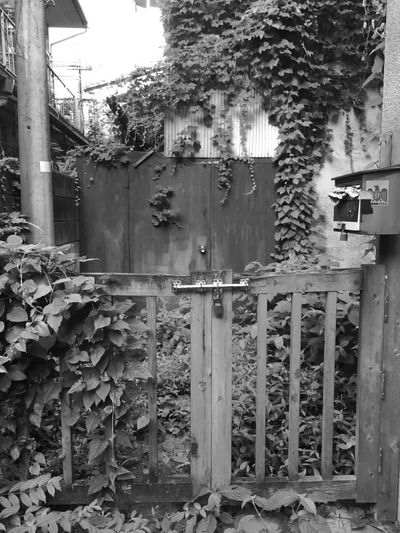 left behind_3 Shinjuku Tokyo B&w Scenery